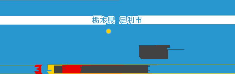 栃木県 足利市 犬猫の負担に配慮した歯科治療 365日診療だからこそ安心の 動物病院川上